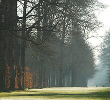 Still waiting for spring at Groeneveld by jchanders