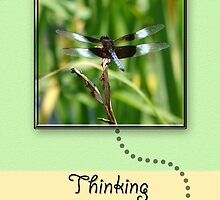 Dragonfly Thinking of You by Sheryl Kasper