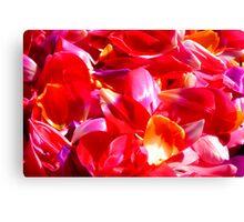 Tulip petals Canvas Print