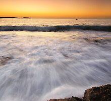 Morning glory by Geraldine Lefoe