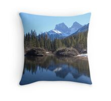 Beaver dam Throw Pillow