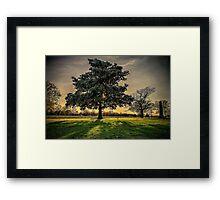Let the Sun Shine Through Framed Print