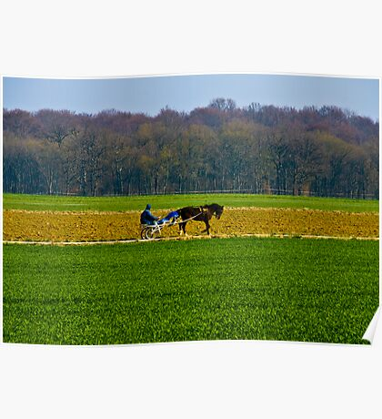 Countryside Poster