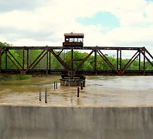 swollen ocmulgee river by tomcat2170