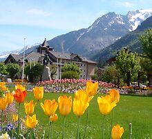 Chamonix Mount Blanc by fennellio