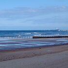 Blyth Beach........ by DoreenPhillips
