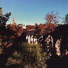 Cabrillo bridge  by Santamariaa