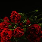 Red Flowers from Dustin by Victoria DeMore