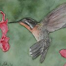Redthroat by BenPotter