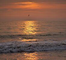 Leon beach sunset by Andrew Howson