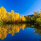 Easton Ponds by RavenFalls