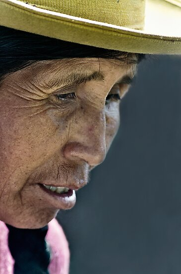 Traditional Peruvian woman  by Andrew Howson