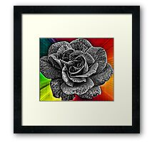 Another Wild Rose for Gail and Deb Framed Print
