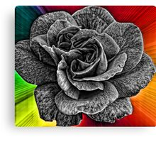 Another Wild Rose for Gail and Deb Canvas Print