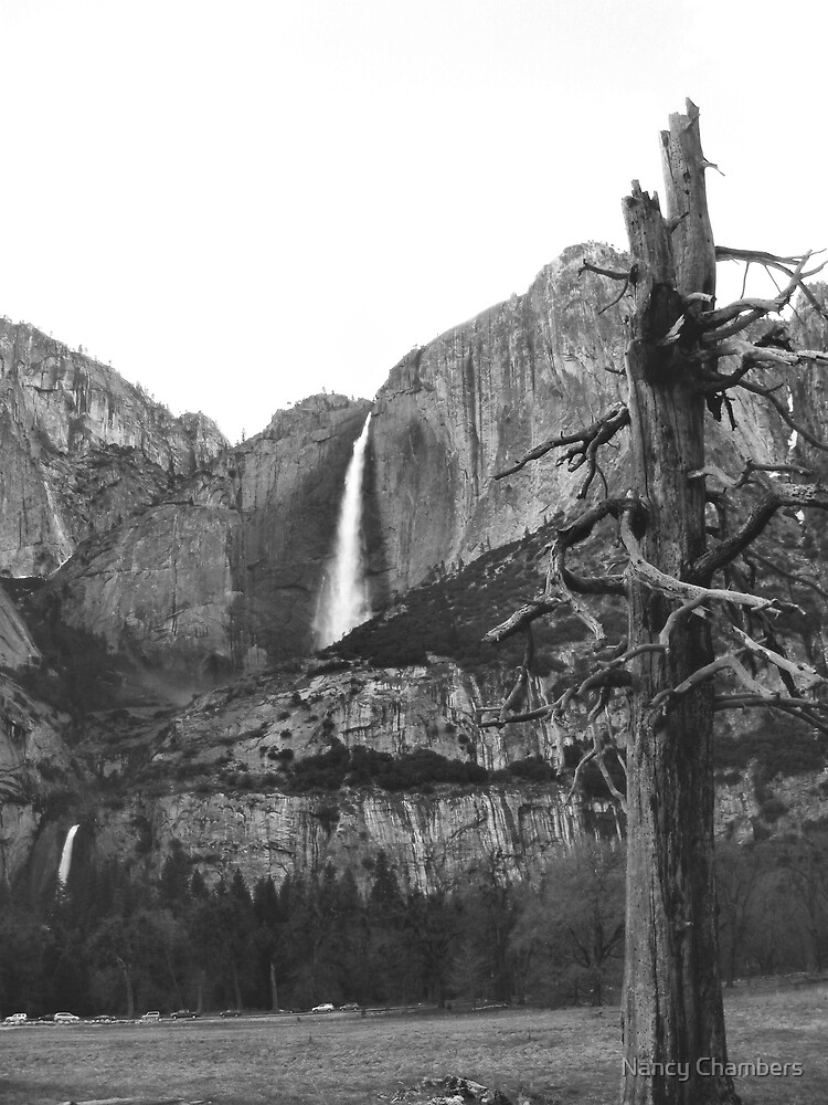 Upper & Lower Yosemite Falls (Black & White) by NancyC
