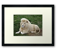 White King Framed Print