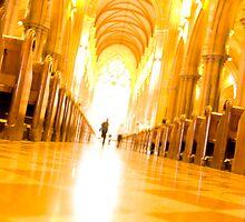 Heading towards the light by David Petranker