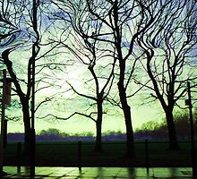 Twisty Trees by farmbrough