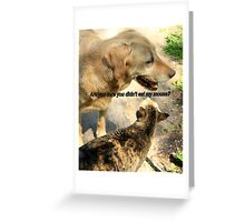 Dog and Cat Humor Greeting Card