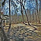 A Road Long Forgotten by Jane Neill-Hancock