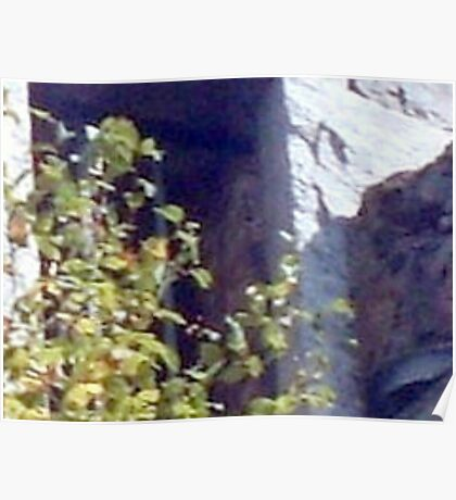 Ghostly Apparition Looking Out of the Garrett Mountain Lookout Tower Poster