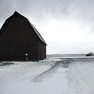 Bleak Winter Barn by Trifle