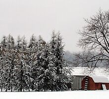 Winter farm scene by Linda Hollins