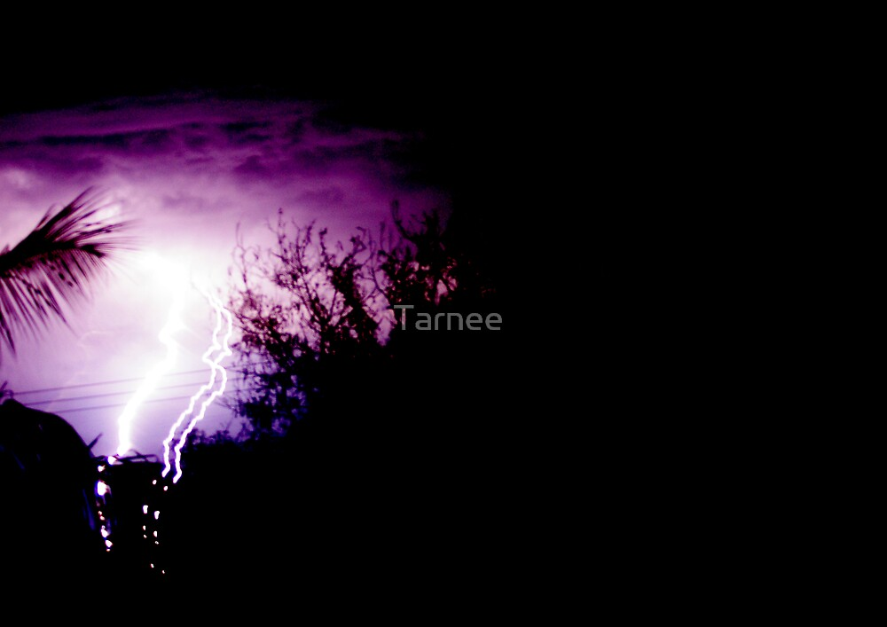 NT Lightning by Tarnee