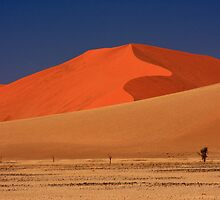 Sand Dunes and Desert Heat, Sossusvlei, Namibia. Africa. by photosecosse /barbara jones