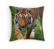 Are you my next meal ? Throw Pillow
