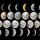 Phases of the Moon by monsterplanet