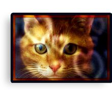 Eyes to the Heart Canvas Print