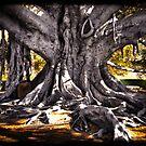 Insane Tree Trunk by littleny