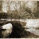 Vintage Pond by littleny