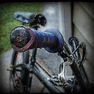The Bike TTV by littleny