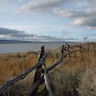 Lake Abert by Thundercatt99