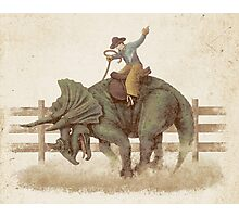 Dino Rodeo  Photographic Print