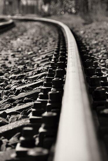 The Rails by stevanovicigor
