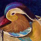 Mandarin duck by conniecrayon