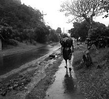 Rainy Day (Mandolins) by dwknight912