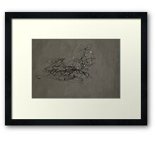 Steel Ephemeral Sculpture Framed Print