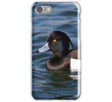 Tufted Duck pair iPhone Case/Skin