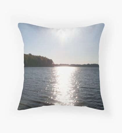Silver plated waters Throw Pillow
