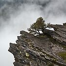 Cloud at Bluff Knoll by Werner Padarin