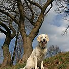 Ditte in the forest on her birthday in April by Trine