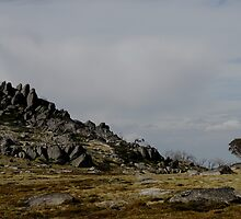 Above Perisher Valley, near the Porcupine by Richard  Stanley