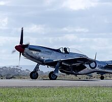Mustang Air Fighter by Guyzimijz