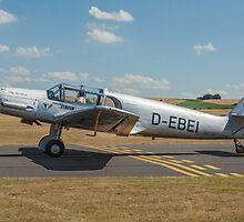 """Messerschmitt Bf 108B Taifun D-EBEI """"Elly Beinhorn"""" by Colin Smedley"""