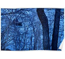 """Central Park Series """"Through the Trees on the Lake"""" Poster"""