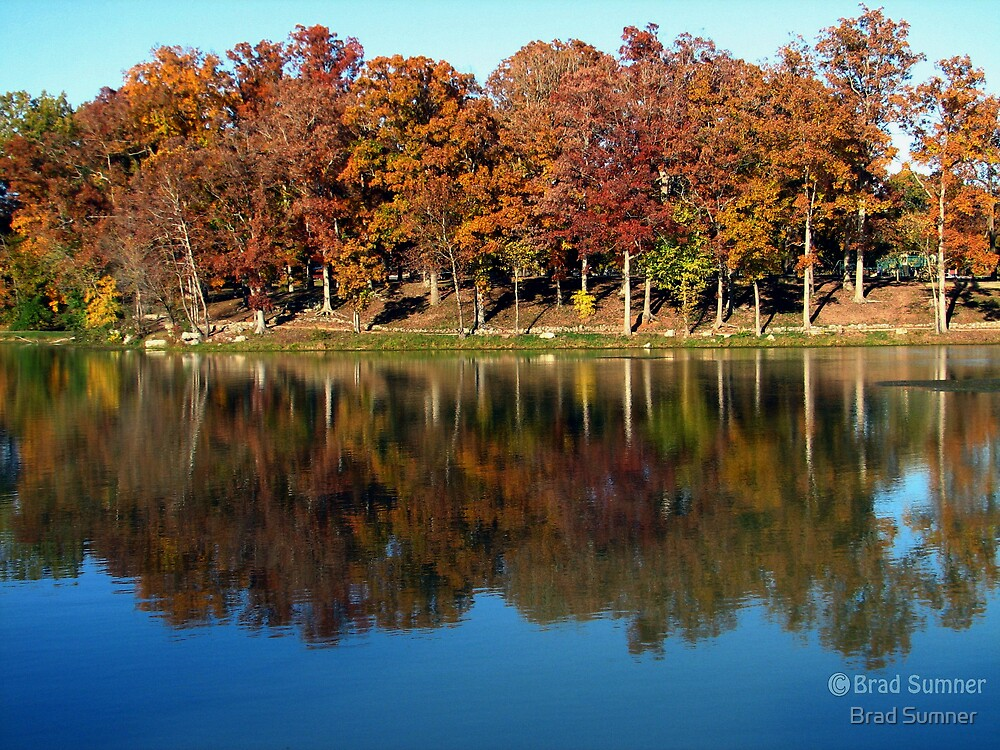 Fall Colors 2 by Brad Sumner